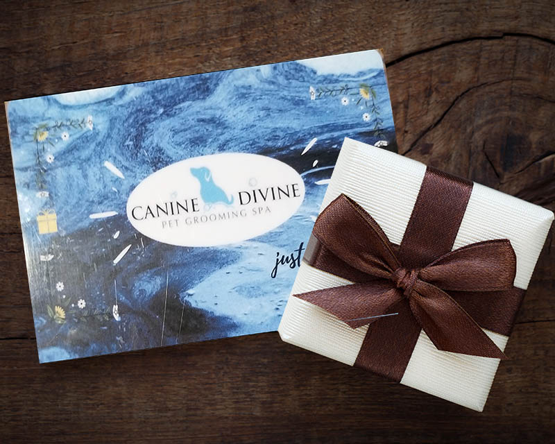 Gift Cards for Dog Grooming at Canine Divine