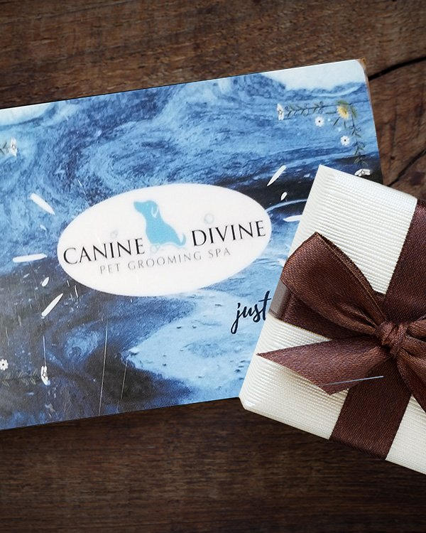 Purchase gift card for dog grooming at Canine Divine