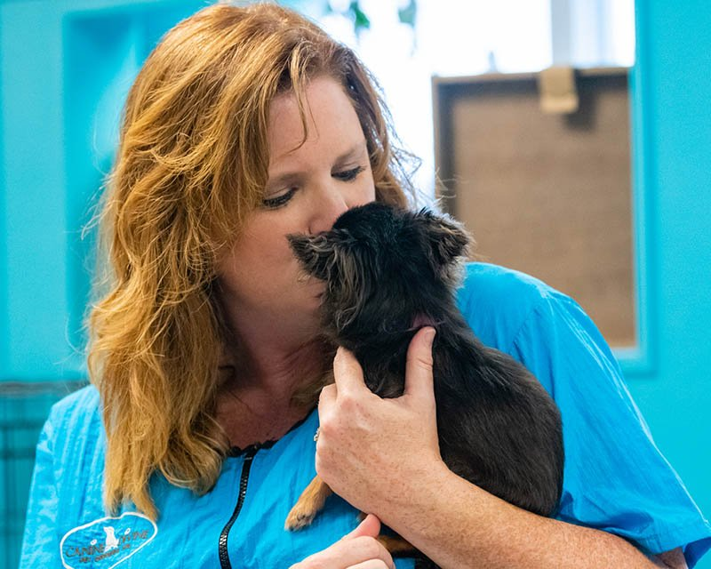 New Grooming Clients at Canine Divine