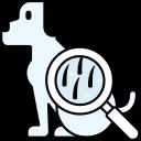 Skin and Coat Care - Dog Groomer Birch Bay